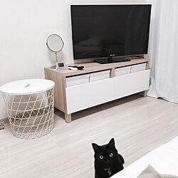 一人暮らし/猫と暮らす/IKEA/北欧のインテリア実例 - 2017-08-13 09:17:47