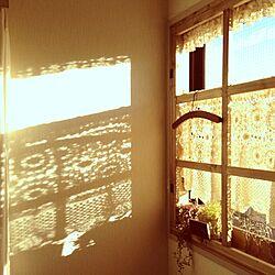 リビング/シルエット/影/手作り窓枠/カフェカーテンのインテリア実例 - 2012-12-06 15:21:31