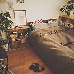 ベッド周り/DIY/100均/観葉植物/一人暮らし...などのインテリア実例 - 2016-11-23 17:12:15