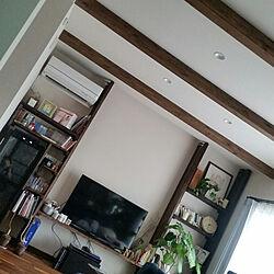 リビング/天井/ウンベラータ/本棚/壁面収納DIY...などのインテリア実例 - 2019-02-09 14:41:49