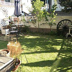 玄関/入り口/秋の庭のインテリア実例 - 2013-10-09 21:44:42