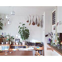 リビング/土屋鞄ランドセル/生活感/DIY/IKEA...などのインテリア実例 - 2016-02-02 19:33:18