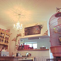 リビング/黒板/シャンデリア/インコと暮らす家/鳥かごスタンド...などのインテリア実例 - 2017-05-18 21:22:35