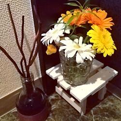 玄関/入り口/香りのある暮らし/男前もシンプルもすき♡/観葉植物/ダイソー...などのインテリア実例 - 2021-04-18 12:48:02