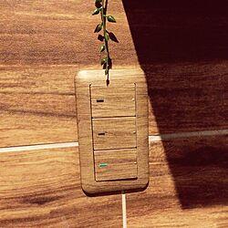 壁/天井/木目シート/木目調シート/シート貼/スイッチのインテリア実例 - 2015-04-09 22:42:29