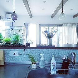 キッチン/マスキングテープ 壁/ウィリアム・モリス/キッチンからの眺め/ミカンの缶詰め...などのインテリア実例 - 2020-05-21 16:38:04