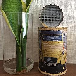 りめかん/リメイク/リメイク缶/リメ缶/リメイク鉢...などのインテリア実例 - 2020-07-08 22:40:37