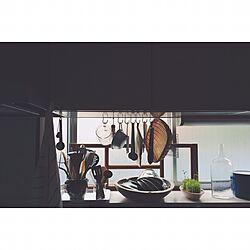 キッチン/台所道具/豆苗/台所/キッチン収納...などのインテリア実例 - 2016-11-08 14:31:37