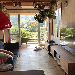 部屋全体/ウッドデッキ/猫窓/ねこやづら/里山...などのインテリア実例 - 2017-11-05 10:36:10