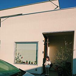 玄関/入り口/多肉植物/無印良品/雑貨/グリーン...などのインテリア実例 - 2017-11-17 22:01:37