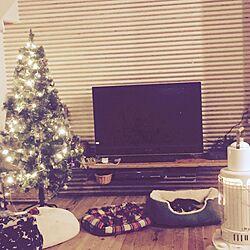 部屋全体/クリスマス/クリスマスツリー/犬/犬と暮らす...などのインテリア実例 - 2015-12-14 23:27:24