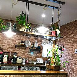 棚/観葉植物/ワイングラスホルダー/ワイングラス/れんが壁紙...などのインテリア実例 - 2017-09-29 07:00:45