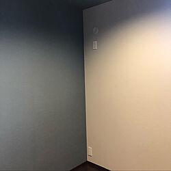 壁/天井のインテリア実例 - 2020-07-21 00:12:13