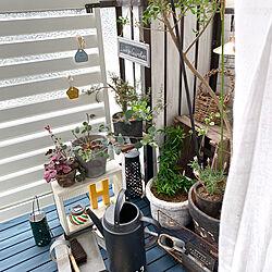 玄関/入り口/アルファベットオブジェ/IKEA/じょうろ/グリーンのある暮らし...などのインテリア実例 - 2019-05-19 08:33:13