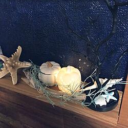 かぼちゃライト/ハロウィン/カリフォルニアインテリアに憧れる/黒板塗料ペイント/ネイビーの壁...などのインテリア実例 - 2020-09-23 15:46:16