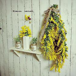 リビング/お花/ダイソーのフェイクグリーン/Andalusiaちゃんありがとう♥/ダイソーの花瓶...などのインテリア実例 - 2019-03-06 19:49:37
