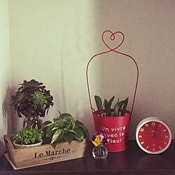 RoomClipアンケート/観葉植物/ナチュラル/雑貨/多肉植物...などのインテリア実例 - 2020-05-09 22:50:38