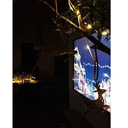 真夜中投稿/ig→raujika_rc/instagramと同じpic/動画はインスタにて/玄関/入り口のインテリア実例 - 2017-12-24 03:46:05