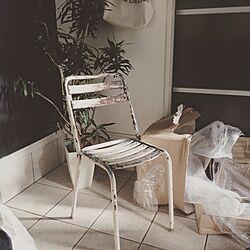 部屋全体/FIVE FROM THE GROUND/フランスアンティーク/シュペンパンザー/観葉植物のインテリア実例 - 2015-12-20 17:47:21