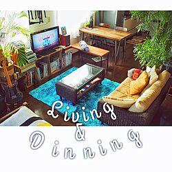 リビング/vagetable box/living/dinning area/一人暮らし...などのインテリア実例 - 2015-05-07 17:55:21