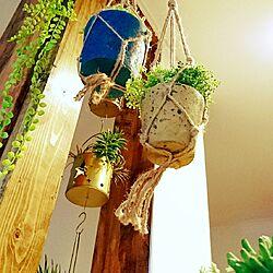 キッチン/いなざうるす屋さん/グリーンのある暮らし/セリア/ディアウォール...などのインテリア実例 - 2017-04-01 02:33:33
