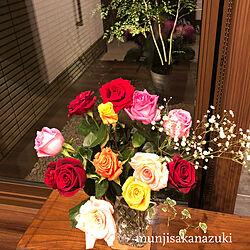 玄関/入り口/照明/玄関ディスプレイ/坪庭/植物...などのインテリア実例 - 2018-03-31 21:28:12