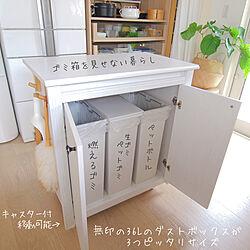 キッチン/キッチンのゴミ箱/ゴミ箱収納/IKEA/ダストボックス...などのインテリア実例 - 2020-11-28 21:07:53