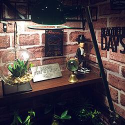 棚/マイケルジャクソン/キーボックス/福岡市/賃貸でも楽しく♪...などのインテリア実例 - 2017-09-03 21:07:33
