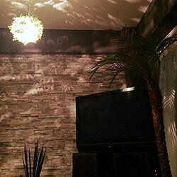 オーディオ周り/フェニックス・ロベレニー/一人暮らし/観葉植物/照明のインテリア実例 - 2015-09-13 18:48:24