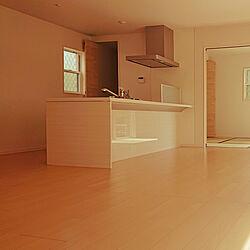 キッチン/建売だけどオシャレハウスを目指します!/北欧/IKEA/多肉植物...などのインテリア実例 - 2021-01-21 20:27:27