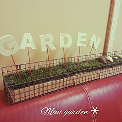 リビング/ガチャ/ガーデンニング雑貨/CAN DO/キャンドゥのインテリア実例 - 2014-12-04 22:32:32