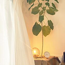照明/IKEA/北欧/観葉植物/雑貨...などのインテリア実例 - 2021-01-24 19:30:44