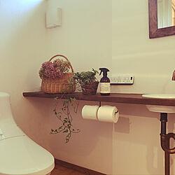 バス/トイレ/観葉植物/ドライフラワーを飾るのインテリア実例 - 2018-08-20 12:00:41