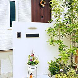秋仕様/ハロウィン仕様/ハロウィン/玄関/入り口のインテリア実例 - 2019-09-14 17:42:05