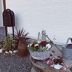 ガーデニング♡/クリスマス/好きなものに囲まれた暮らし/サンタさん♡/花のある暮らし...などのインテリア実例 - 2020-11-15 18:48:04