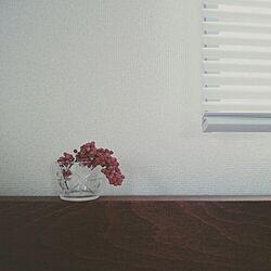 花のある暮らし/辻和美/部屋全体/ピンクペッパーのインテリア実例 - 2015-08-14 09:11:58