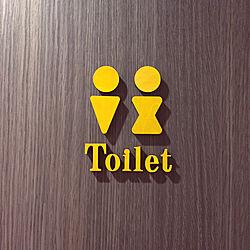 バス/トイレ/トイレットマーク/トイレのドア/トイレ/北欧...などのインテリア実例 - 2017-09-08 08:22:04