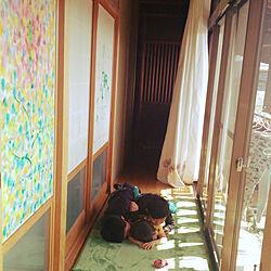 玄関/入り口/暮らしの一コマ/リノベーション/3兄弟/障子...などのインテリア実例 - 2018-03-30 10:13:50