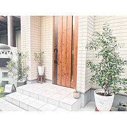 玄関ガーデン/玄関前/玄関ドア/玄関/花より葉っぱ...などのインテリア実例 - 2019-05-19 18:56:13