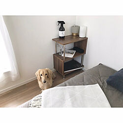 ベッド周り/サイドラック/COLONY 2139/シンプルが好き/白い家...などのインテリア実例 - 2018-10-19 13:18:19