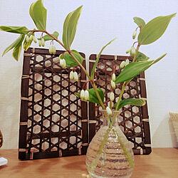 机/植物のある暮らし/生花/生花のある暮らし/庭の花...などのインテリア実例 - 2021-04-06 13:02:39