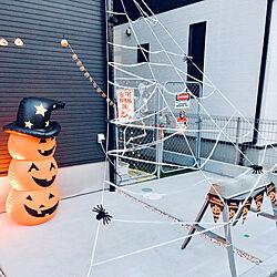 昼間の様子/スパイダー/クモ/蜘蛛の巣/ハロウィン...などのインテリア実例 - 2020-10-23 10:03:06