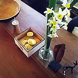 節分/水仙/鶴屋吉信/福ハ内/和菓子のインテリア実例 - 2020-01-17 19:49:57