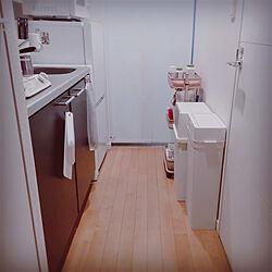 キッチン/キッチンのゴミ箱/狭い廊下/一人暮らし/like-it...などのインテリア実例 - 2020-11-03 04:16:39