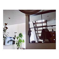 部屋全体/ウンベラータ/ドラセナ/パキラ/玄関ドア...などのインテリア実例 - 2019-01-29 12:03:03