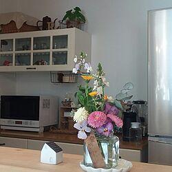 キッチン/花のある暮らし/春゚・*:.。❁/庭の花/押し逃げごめんなさい...などのインテリア実例 - 2017-03-11 14:14:51