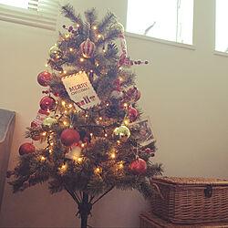 クリスマスツリー120cm/クリスマス/子どもと暮らす/部屋全体/ニコアンド ツリーのインテリア実例 - 2020-11-26 12:45:57