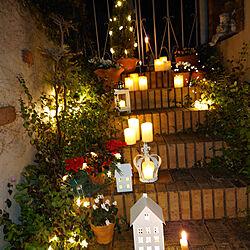 壁/天井/クリスマス/花のある暮らし/LEDキャンドル/LEDライト...などのインテリア実例 - 2020-12-19 10:17:46