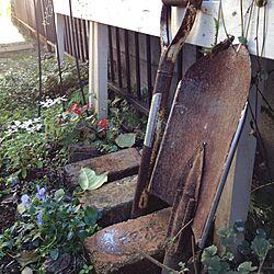 玄関/入り口/庭/放置エリアのインテリア実例 - 2012-11-27 13:29:43