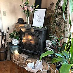 花瓶/ホルムガード/北欧/暖炉の上/ポスター...などのインテリア実例 - 2020-03-25 22:32:42